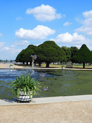 PMA visit to Hampton Court on 11 July 2018